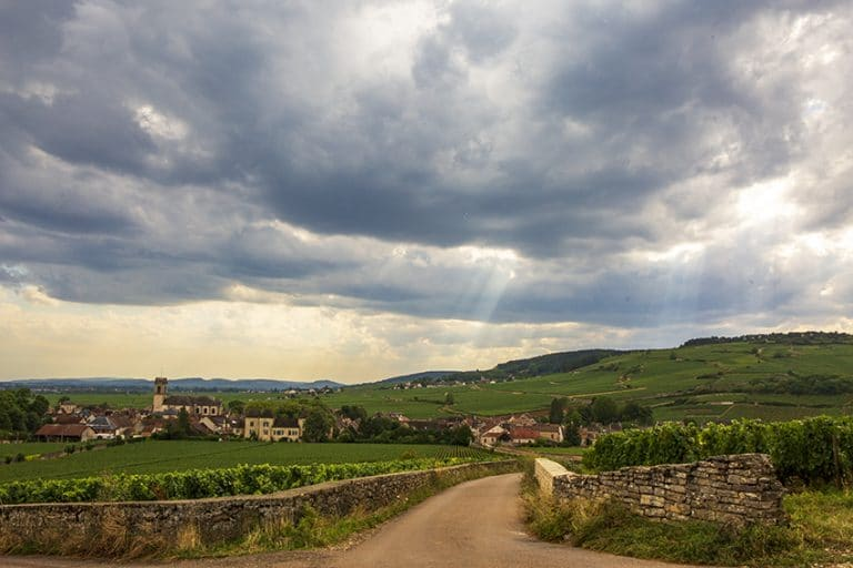 Le village de Pommard, en Côte de Beaune, vu depuis les premiers crus du nord de l'appellation.