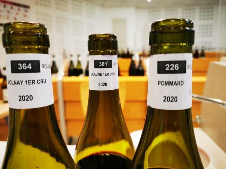Échantillons de Beaune, Volnay et Pommard 2020 dégustés à l'aveugle.
