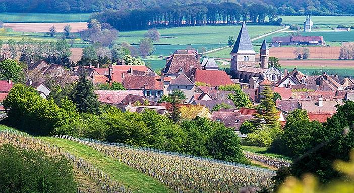 Au dessus de Buxy, dans le Montagny premier cru Les Vignes des Prés.