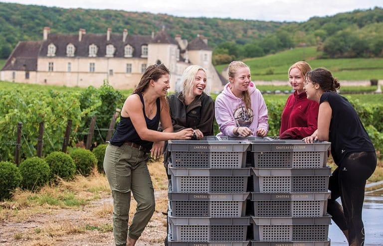 Pause pendant les vendanges 2020, au château de la Tour, en appellation Clos de Vougeot (Bourgogne)